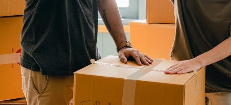 people holding cardboard box