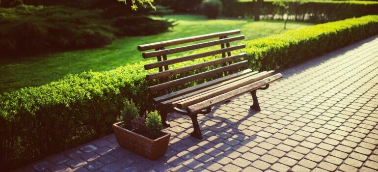 Empty bench in the park representing Glover park as one of the DC area places for a quiet family life